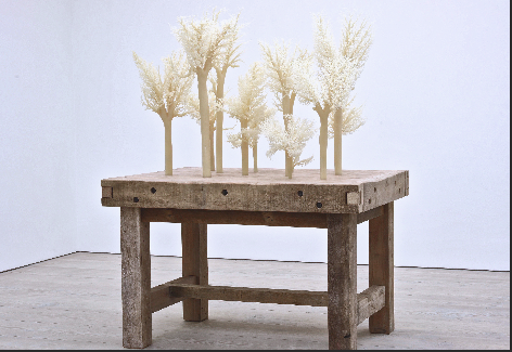 'Echoes of the Kill', 2015 Wax, Wood, Steel 120W x 170L x 110H, dimensions variable